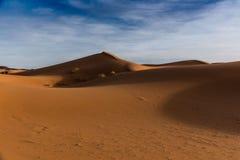 Dunes dans le désert Images libres de droits