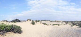Dunes dans Nizzanim, Israël Photographie stock libre de droits