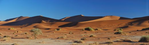 Dunes dans Sossusvlei Photo stock