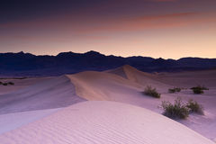 Dunes at Dawn. Pink Sand Dunes with Silhouette Mountains Against Dawn Sky Royalty Free Stock Photography
