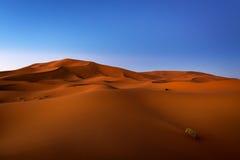 Dunes at dawn in Erg Chebbi near Merzouga in Morocco Royalty Free Stock Photo