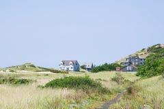 Dunes de Cape Cod photo libre de droits