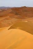 dunes de désert Photos libres de droits