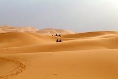 Dunes de désert Photo libre de droits