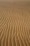 Dunes de désert dans mamie Canaria de Maspalomas Photos stock
