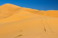 Dunes de désert de Sahara Image stock
