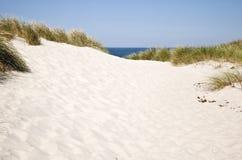 Dunes de la Mer du Nord au Danemark Photographie stock