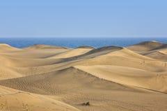 Dunes de Maspalomas, canari grand photographie stock