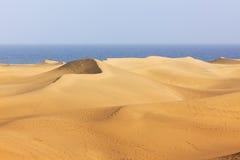 Dunes de Maspalomas, canari grand
