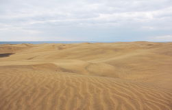 Dunes de Maspalomas, mamie Canaria Photos stock