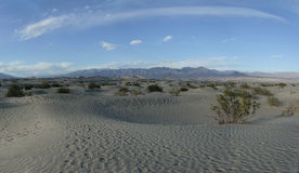 Dunes de mesquite - Death Valley la Californie Photo stock