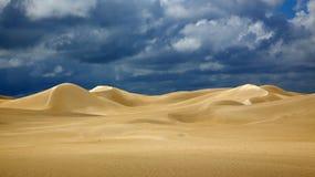 Dunes de parc national de Nambung Photo libre de droits