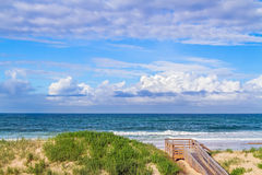 Dunes de plage d'océan photos stock