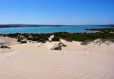 Dunes de roulement et péninsule d'océan bleu, Eyre Photographie stock libre de droits
