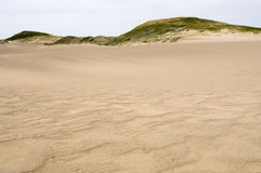 Dunes de sable Photographie stock libre de droits