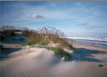Dunes de sable photographie stock