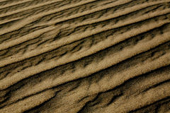 Dunes de sable Images libres de droits