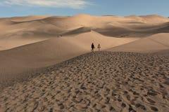 Dunes de sable photographie stock