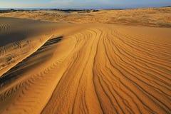 Dunes de sable argentées de lac Images stock