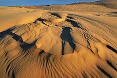 Dunes de sable argentées de lac Image libre de droits