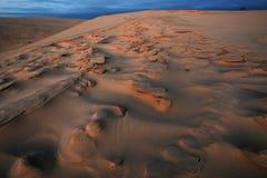 Dunes de sable argentées de lac Photos libres de droits