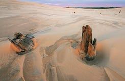 Dunes de sable argentées de lac Photos stock