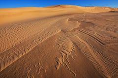 Dunes de sable argentées de lac Photographie stock