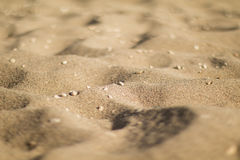 Dunes de sable avec des cailloux, angle faible Photos libres de droits