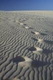 Dunes de sable avec des empreintes de pas Photos libres de droits