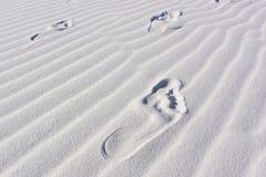 Dunes de sable avec l'empreinte de pas d'ondulations Photographie stock