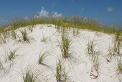 Dunes de sable avec l'herbe naturelle Images stock
