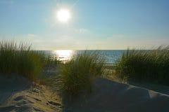 Dunes de sable avec le roseau des sables à la Mer du Nord avec le soleil le soir Photo stock