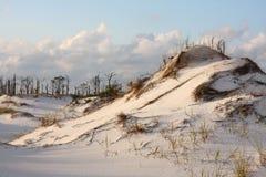 Dunes de sable blanches sur la côte de Golfe Photos stock