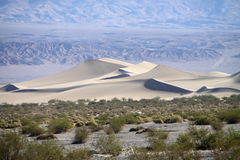 Dunes de sable chez Death Valley Images libres de droits