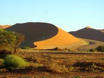Paysages africains du sud Photos stock