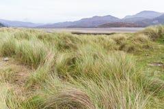 Dunes de sable d'herbe et estuaire de Mawddach Photographie stock
