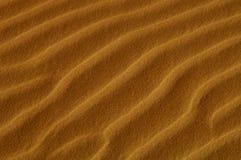 Dunes de sable d'Oceana Image libre de droits