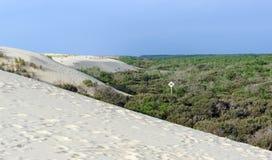 Dunes de sable dans la côte maritime de Charente Photo stock
