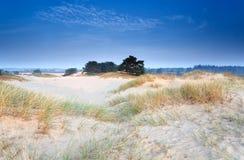 Dunes de sable dans le crépuscule de matin Photo stock