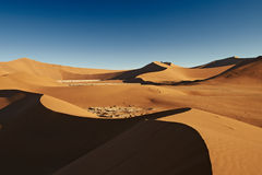 Dunes de sable dans le désert de Namib Photo stock