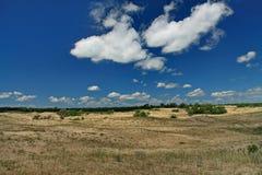Dunes de sable dans le delta de Danube Photographie stock libre de droits