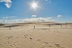 Dunes de sable dans Leba, Pologne Photo stock