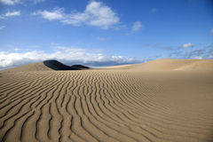 Dunes de sable dans Maspalomas Image libre de droits