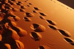 Dunes de sable dans Sahara Desert, Merzouga Images libres de droits