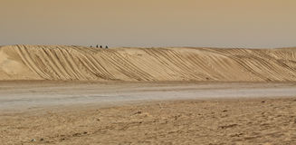 Dunes de sable de désert de Sahara Photo libre de droits