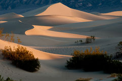 Dunes de sable de mesquite en stationnement national de Death Valley Photos stock