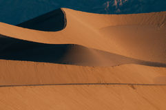 Dunes de sable de mesquite en stationnement national de Death Valley Images stock