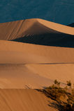 Dunes de sable de mesquite en stationnement national de Death Valley Photos libres de droits