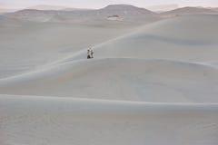 Dunes de sable de parc national de Death Valley Image stock