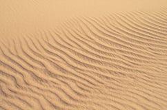 Dunes de sable de plage Image stock